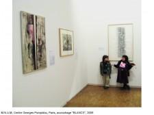 http://beatrice-casadesus.com/files/gimgs/th-62_Casadesus_Vues-Expos_27_Pompidou_2009.jpg