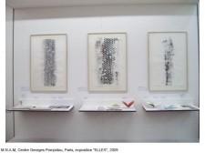 http://beatrice-casadesus.com/files/gimgs/th-62_Casadesus_Vues-Expos_28_Pompidou_2009.jpg