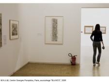 http://beatrice-casadesus.com/files/gimgs/th-62_Casadesus_Vues-Expos_29_Pompidou_2009.jpg