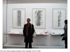 http://beatrice-casadesus.com/files/gimgs/th-62_Casadesus_Vues-Expos_35_Pompidou_2009.jpg