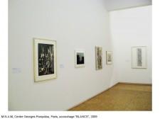 http://beatrice-casadesus.com/files/gimgs/th-62_Casadesus_Vues-Expos_36_Pompidou_2009.jpg