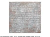 http://beatrice-casadesus.com/files/gimgs/th-9_casadesus_1992_Petitesuitelumierefroide5.jpg